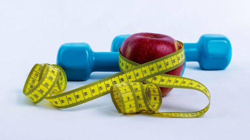 Darmbakterien beeinflussen das Gewicht