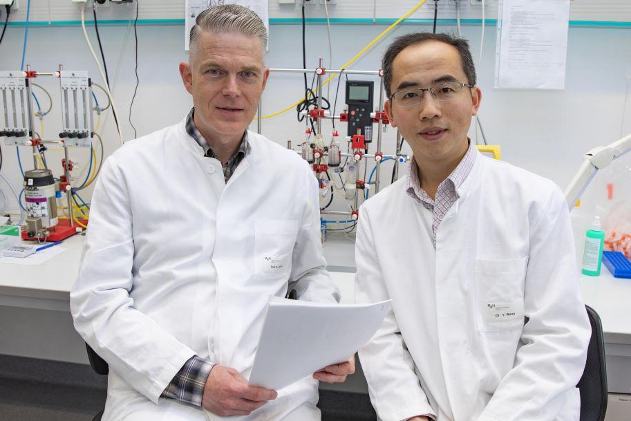 Immunzellen helfen Herzinfarkt zu heilen