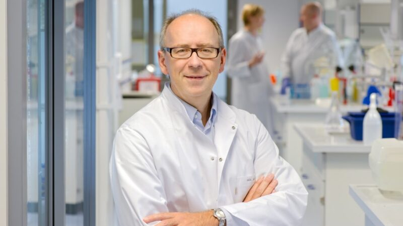 Wie aktivierte T-Zellen die Leber zerstören