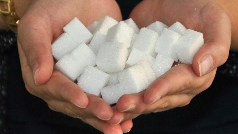 Zucker verdoppelt Fettproduktion nachhaltig